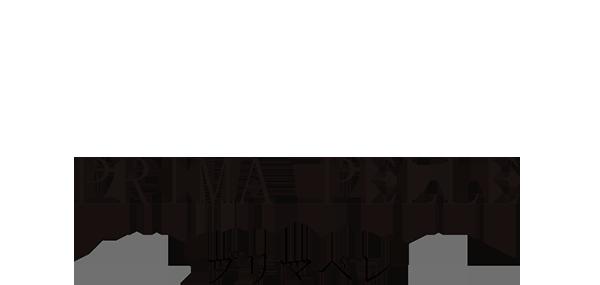 PRIMA PELLE -プリマペレ-